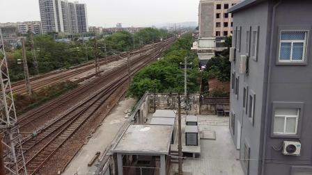 京局京段的HXD3D型电力机车牵引京广线的王牌直达特快Z35次列车从广州北站通过