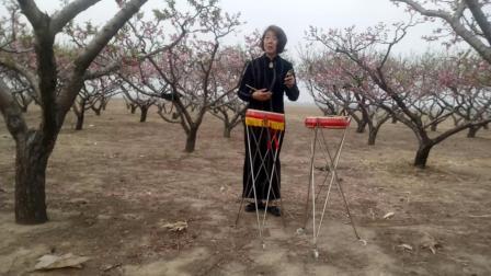 大城舞动人生广场舞小苹果制作