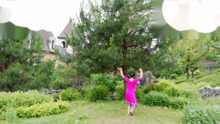 VID_20190523_180441广场舞《心上的罗加》演示:念梦