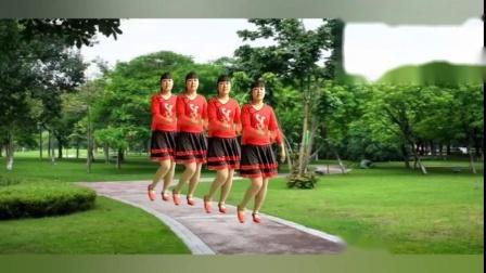 专业广场舞《为什么时间都走了》庄铭泽演唱 健身休闲