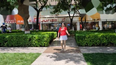 皮皮奶奶广场舞~190524东北汉子