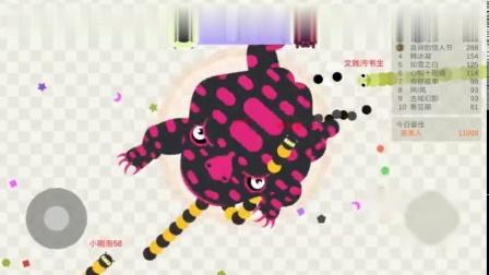 小蛇斗蜈蚣-两个蛤蟆的巅峰对决-比的是什么-比的就是速度与技巧