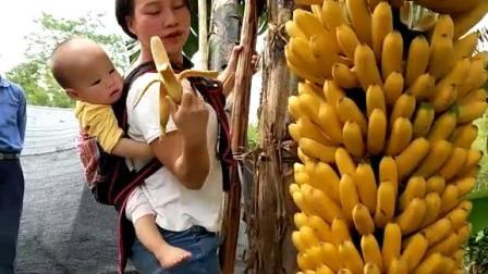 大香线蕉视频在线观看75