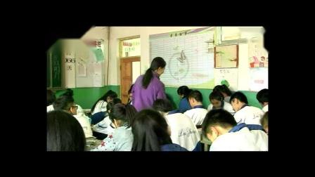 人教课标版-2011化学九上-3.2.1《原子的结构》课堂教学实录-王楠楠