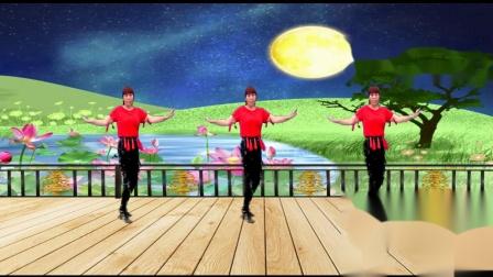 适合初学者单人水兵舞蹈视频 武安东寺庄广场舞十五的月亮