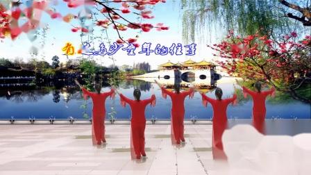 点击观看《北站草儿广场舞 红枣树减肥健身操正背面》