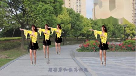 点击观看《武安东寺庄广场舞《不变的情缘》简单好学16步》