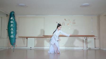 高品质古典舞视频归去来兮 小姐姐仙气十足