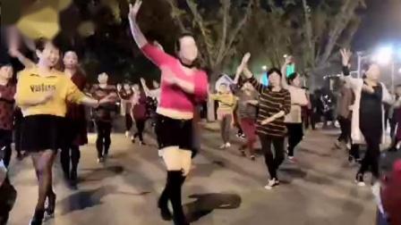 舞灵美娜子广场舞  黄梅戏《对花》夜舞版
