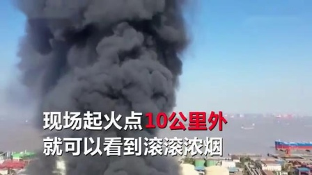 浦东一粮油公司突发火灾 现场10公里外可见滚滚浓烟