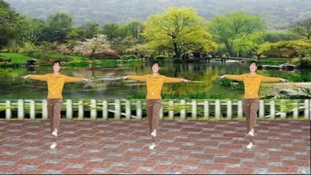 无基础阿娜舞蹈 野花香广场舞教学分解动作