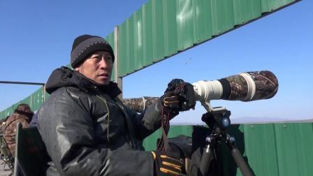 珲春候鸟的天堂   2021.3.2