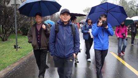 音乐MV《梅花》江阴市麒麟摄影群南京梅花山采风游