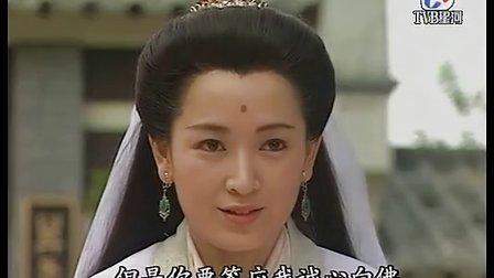 西游记张卫健版07
