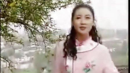 『黄梅戏选段』徽商情缘 我是一只雁 韩再芬