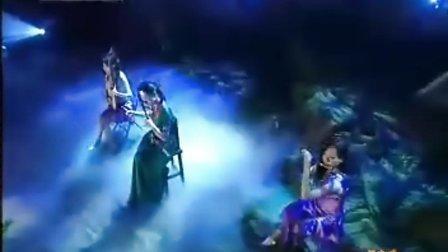 二胡琵琶笛子演奏《在那遥远的地方》