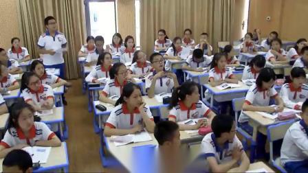 部編版八年級歷史《鋼鐵長城》優秀教學視頻