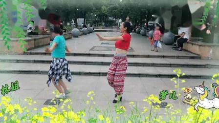 杨丽萍广场舞《不做你幸福的玫瑰》演示 林姐  梦儿