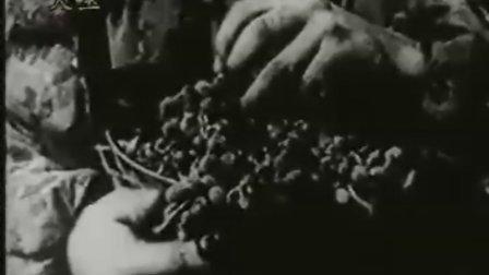 第二次世界大战100年全程实录:  10