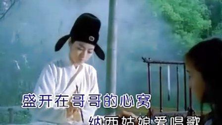 陈思思 纳西情歌KTV视频图片