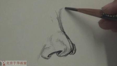 速写鼻子结构图