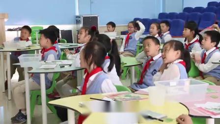 一年级科学《观察叶》汇报展示课视频-湖北省武昌实验小学