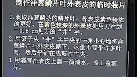 江苏省高中生物创新优质课评比优质课展示