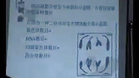 减数分裂-王永刚-江西贵溪实验中学 新课程高中生物优质课评比