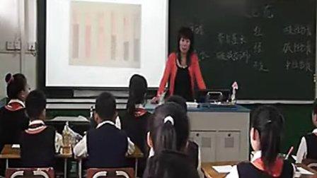 小学六年级科学优质课展示《变色花》苏教版_王老师