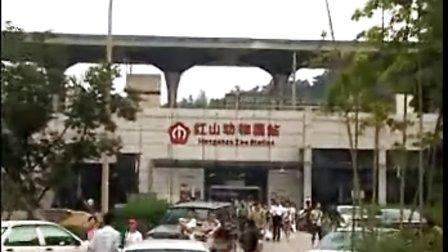 南京地铁官方介绍视频:红山动物园站