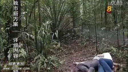 糊里糊涂爱上它  (2012) 11【新加坡剧】