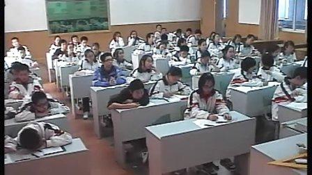 八年级数学优质示范课《灯光与影子》_王继承