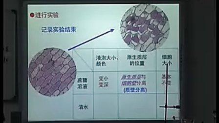 物质的跨膜运输的实例 龚丹 苏州 新课程高中生物优质课评比