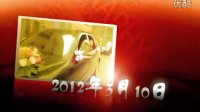 AE婚庆字幕视频片头模板53