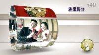 AE婚礼预告片视频片头模板108