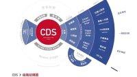【中國最活躍設計交流組織都做了什麼】CDS中國設計師沙龍 2013年終總結