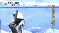 20140507 D305_圓仔成長日記 The Giant Panda Yuan-Zai (480p)
