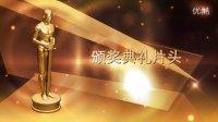 【醉清风制作】会声会影X6模板 颁奖典礼片头B