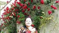 二十九.土耳其-五月的花花世界-2014.5