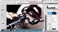 美女与蝎子PS合成商业修图大片