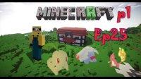〖扁桃〗我的世界神奇宝贝生存Ep25上〓改造家园之储存〓MC_Minecraft.mp4