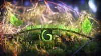 Videohive-Spring Leaves Logo 唯美春季树木发芽生长logo展示AE模板