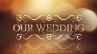 1194_高端唯美金色婚礼漏光梦幻粒子包装展示AE模板