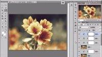 [PS]PS教程Photoshop实战案例学习教程之影楼后期花卉古典PS调色