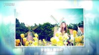 AE 09 婚礼相册 电子相册 玫瑰 爱情 开场 韩式 梦幻 光效 情人节 表白
