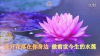 佛教音乐歌曲大全100首经典《愿做菩萨那朵莲》大悲咒歌曲全文念诵佛经阿弥陀佛梵唱佛歌