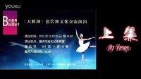 20151221:乌克兰-天鹅湖芭蕾舞剧(上)