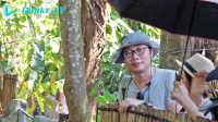 果壳巴厘岛之行:动物园能有多好玩?