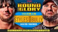 【橙子解说】PPV第四十六期 TNA荣耀之路 AJ Style