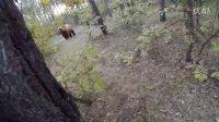 视频: 惊悚!!男子山林遇大熊骑车速降逃命前面竟然有路障……